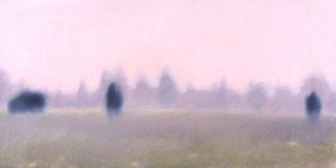 Misty Meadow 1